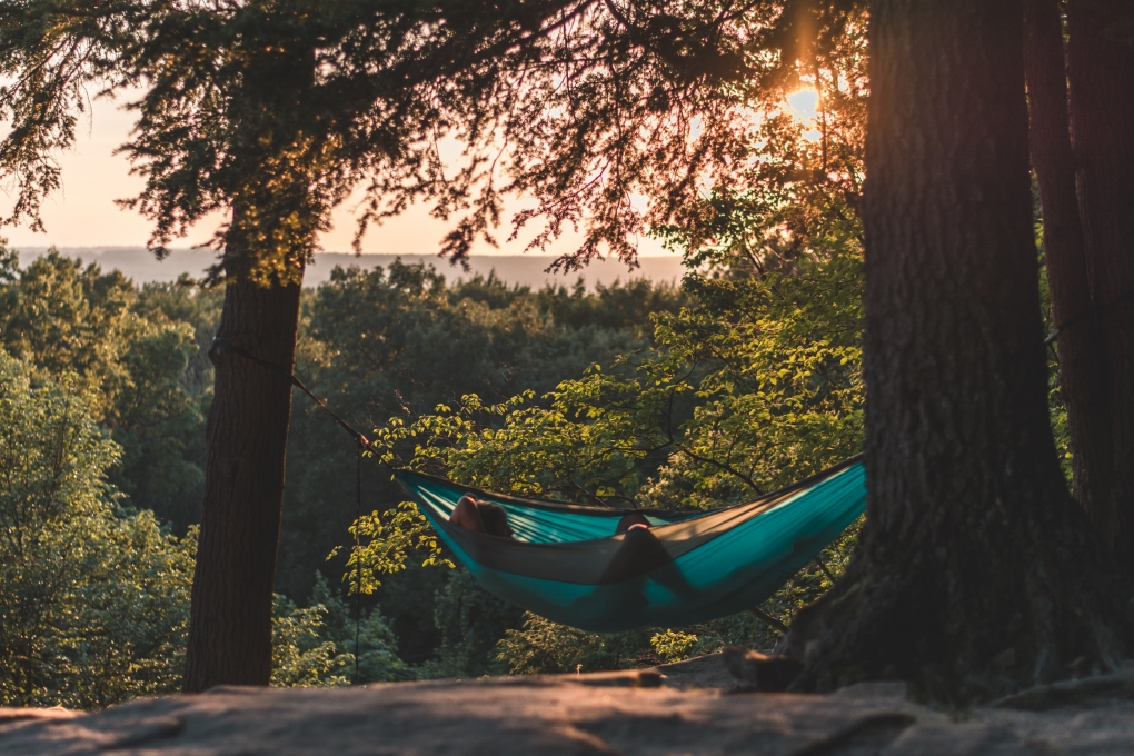 person lying on hammock between trees at daytime 12297531